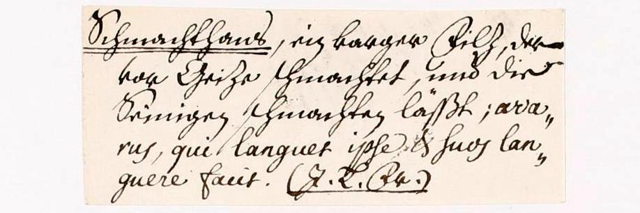 Glossarium der deutschen Sprache.